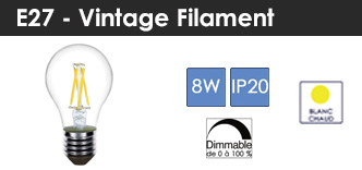 2018-categ-lampes-bf-e27f8wd-1
